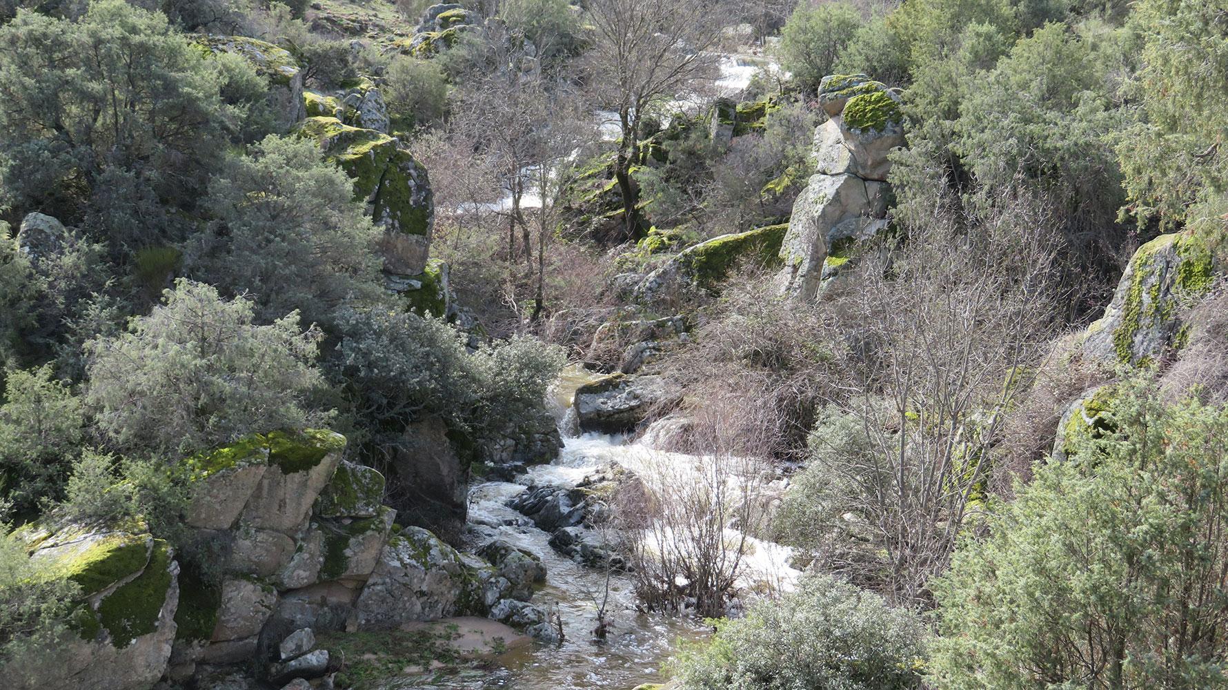 Arroyo grande y antiguo puente en los batanes  - Ayuntamiento de Paredes de Escalona